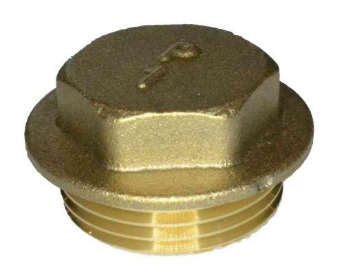1 Inch BSP Brass Flanged Plug