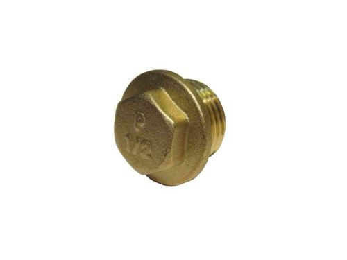 1/2 Inch BSP Brass Flanged Plug