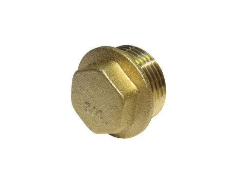 3/4 Inch BSP Brass Flanged Plug