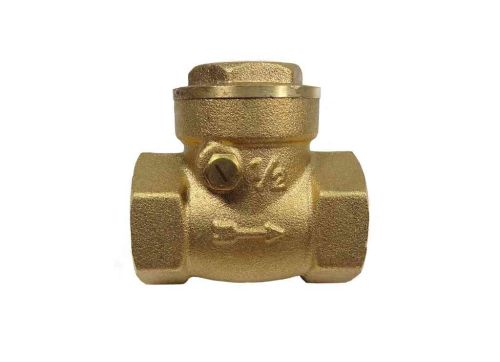 1/2 Inch BSP Swing Check Valve
